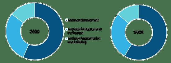 Custom Antibody Market, by Service – 2020 and 2028