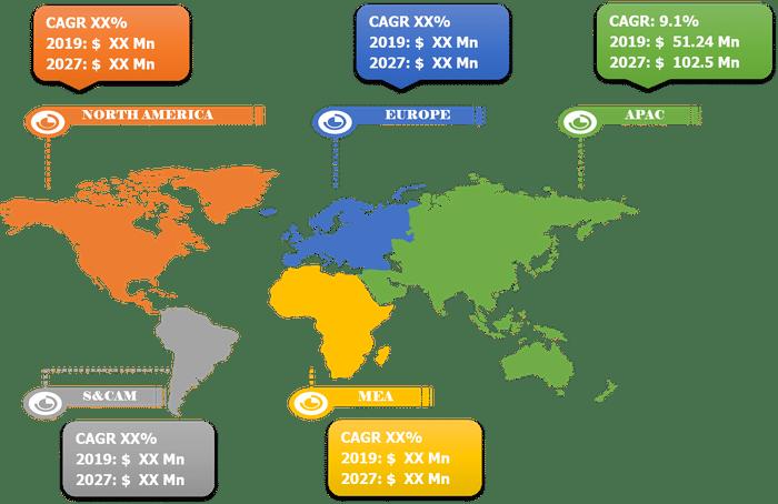 Lucrative Regional Capsule Endoscopy Market