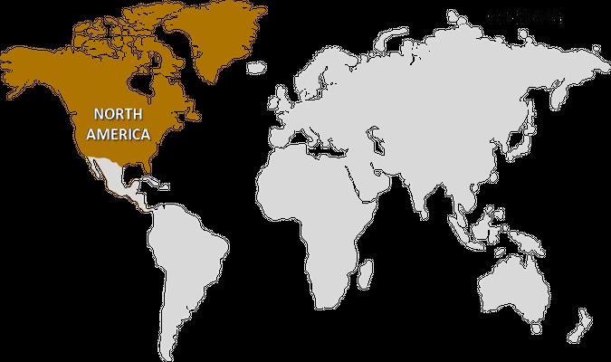 North America Moringa Products Market