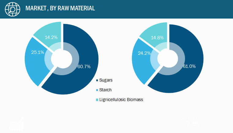 Bio-Based Ethylene Market, by Raw Material – 2019 and 2028