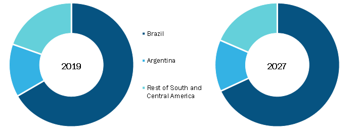 South & Central America Critical Care Equipment Market, By Country,2019(% share)