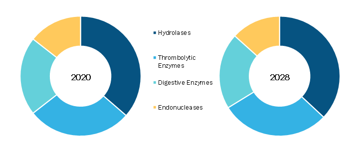 Medical Enzyme Technology Market, by Enzyme Type – 2020 and 2028