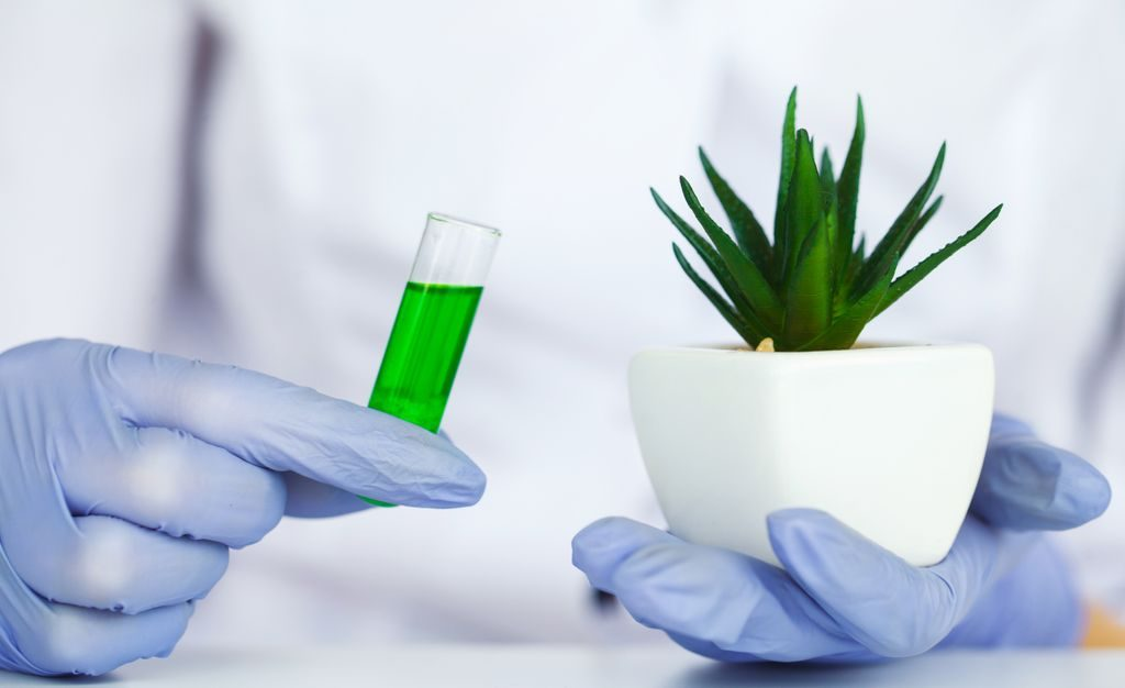 8.2% Global CAGR for Biopharmaceutical Contract Manufacturing Market Market  to achieve US$ 25,497.26 Mn by 2027 - The Insight Partners