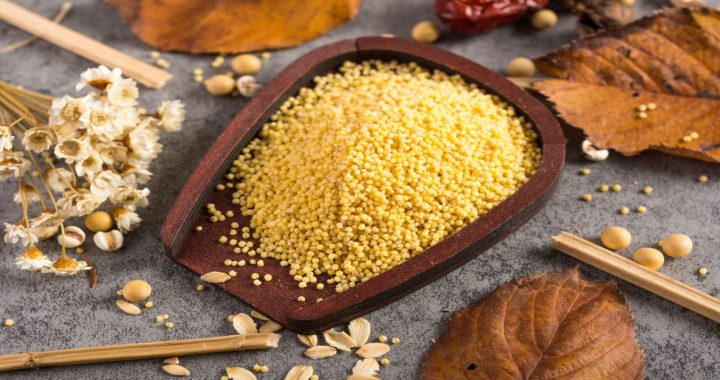4.6% Global CAGR for Millets Market to achieve US$ 14,026.3 Mn by 2027