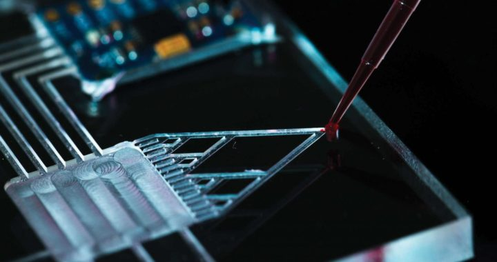 Microfluidics Market: Innovating for the Future in the Biotechnology Industry