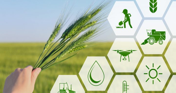 Agritech Market Trends to Watch in 2021 and Beyond