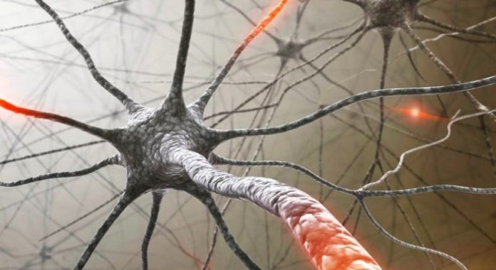 Multiple Sclerosis Therapeutics Market: Exploring the Competitive Landscape in Pharmaceuticals Sector