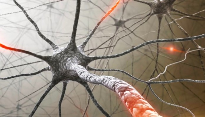 Multiple Sclerosis Therapeutics Market