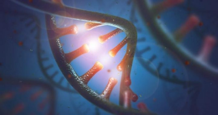 miRNA Sequencing and Assay Market – Analysing the Top Leaders in Biotechnology Sector